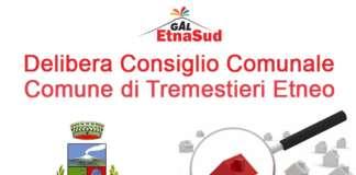 Delibera Consiglio Comunale Comune di Tremestieri Etneo